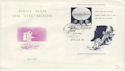 1969 Belgium First Man on the Moon M/S FDC (58762)