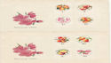 1964 Hungary Fruit Stamps unused on 2 covers (59439)