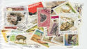 Worldwide x50 Animal Stamps in packet (J43)